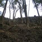 津和野城出丸石垣(北から)