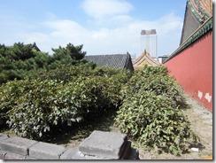 塀外側通路(鳳凰楼入口外西側)(2012年8月撮影)